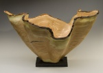 Honey Locust Vessel  #14